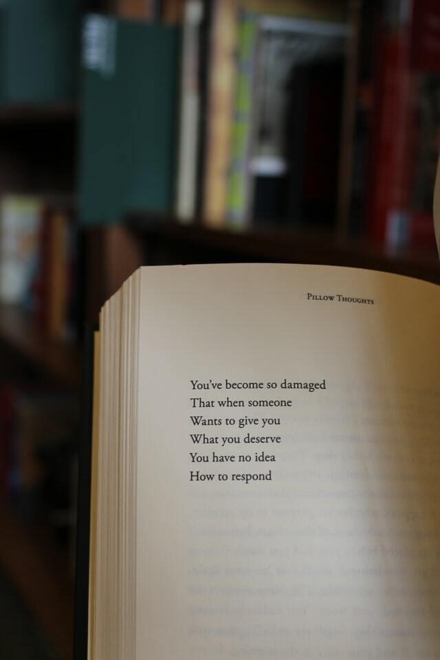 frases de libros bonitas cortas